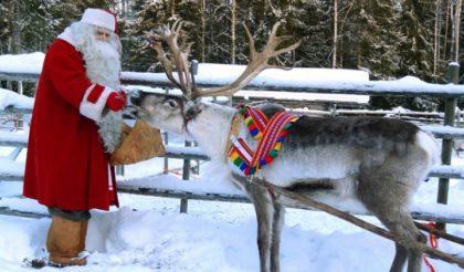 Renne Di Babbo Natale Nomi.La Corsa Delle Renne Di Babbo Natale Verbania Milleventi